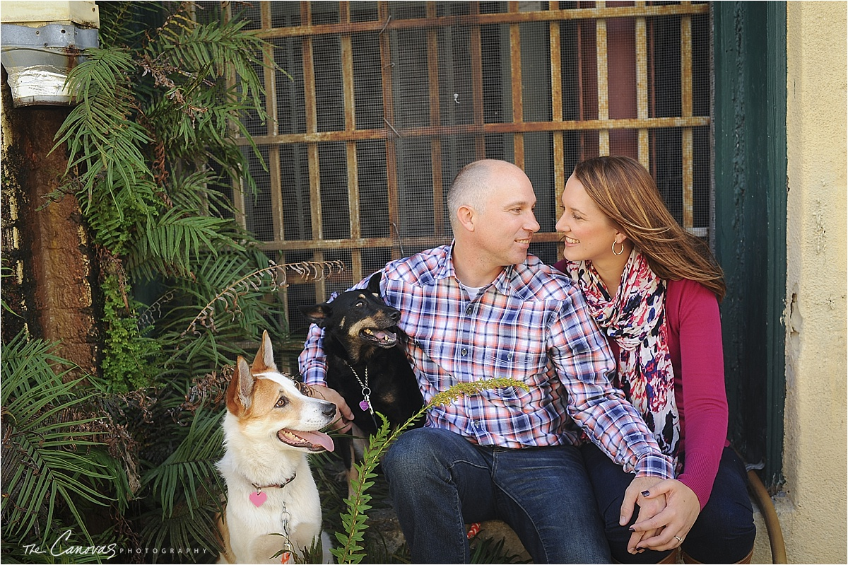 engagement shoot dogs