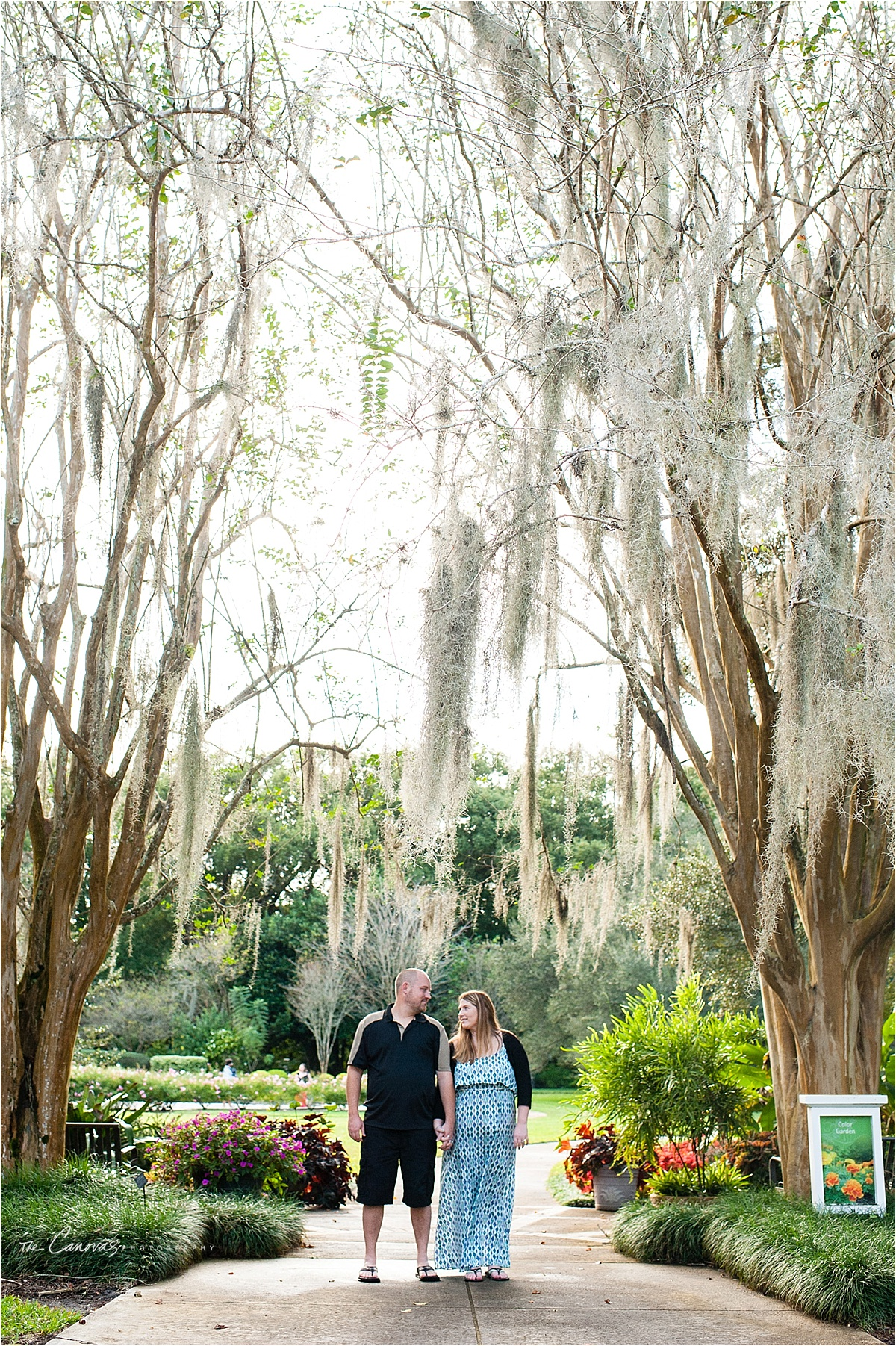 Engagement Photography | Leu Gardens Orlando, Florida