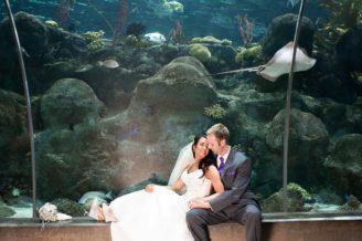Tampa Wedding Photos